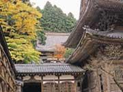 attractions-fukui-01