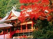 attractions-kagoshima-02