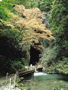 attractions-yamaguchi-02