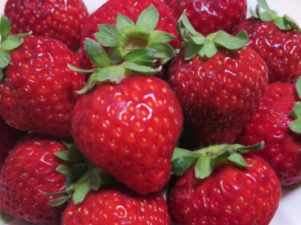strawberry-in-japan-09