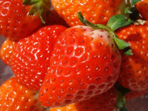 strawberry-in-japan-10