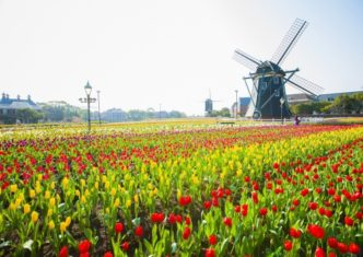 9-place-relax-with-friend-22-huis-ten-bosch