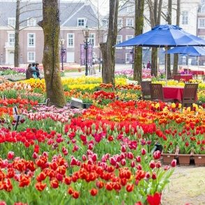 9-place-relax-with-friend-24-huis-ten-bosch