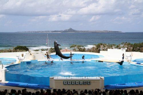 9-places-to-new-experience-15-okinawa-churaumi-aquarium