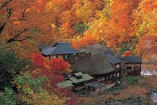 cover-onsen-in-tohoku