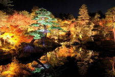 cover-autumn-light-up