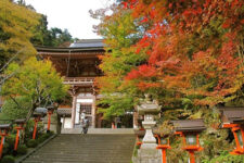 cover-kyoto-in-autumn