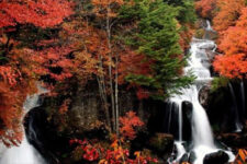 cover-nikko-in-autumn