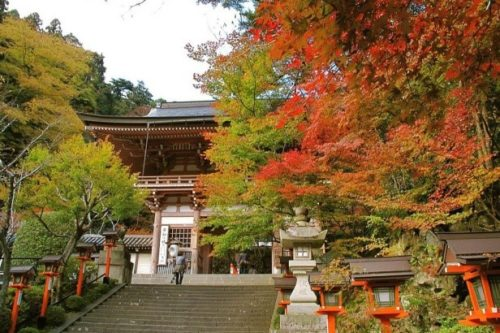 kyoto-in-autumn-05