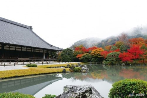 kyoto-in-autumn-10