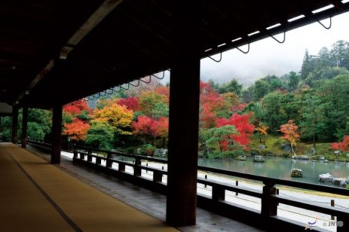 kyoto-in-autumn-11