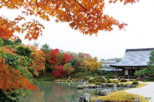 kyoto-in-autumn-12