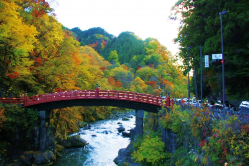 nikko-in-autumn-02