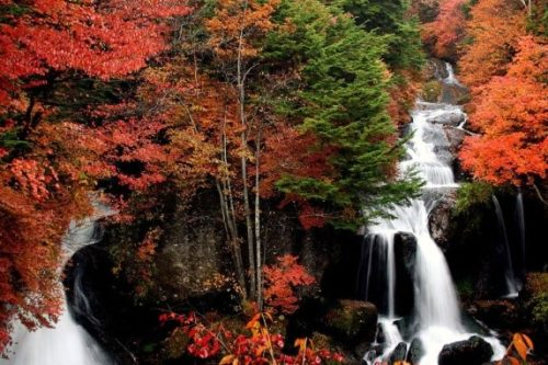 nikko-in-autumn-08