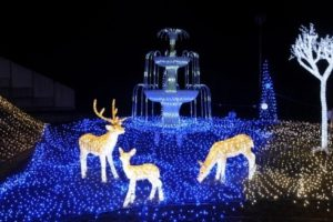 winter-illumination-12