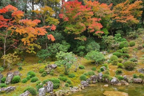Japanese Garden in autumn, Chikurinji Temple